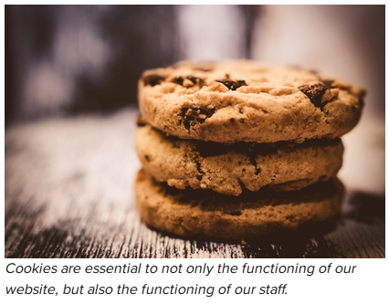 Cookies - essential for functioning of websites and staff